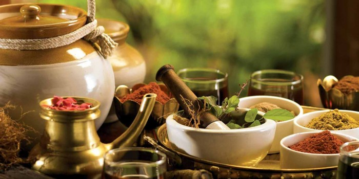 ayurveda panchakarma treatment goa india